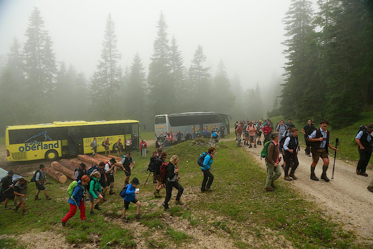 1-Mit-den-Bussen-auf-die-Vereiner-Alm-Hans-Schwaiger